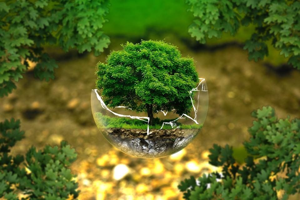 Eco-orgánico Karei